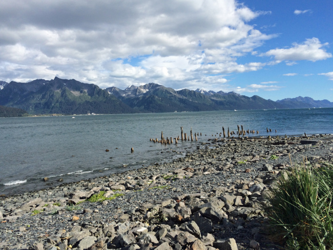 From Anchorage to Seward, Alaska / Vegan on Holland America Cruise, Day 1