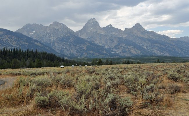 Blame It On The Tetons.