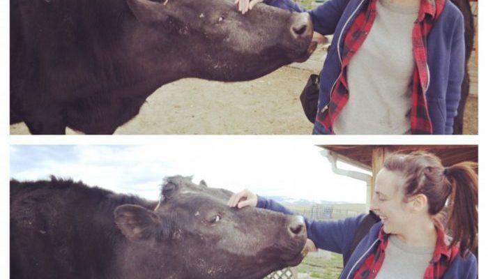 Big Sky Backdrop {Animal Friends & Animal-friendly Eats in Montana}