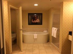 The original bathroom.