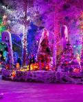 The 3rd annual HallOVeen at Opportunity Village's Magical Forest opened on October 9, 2015