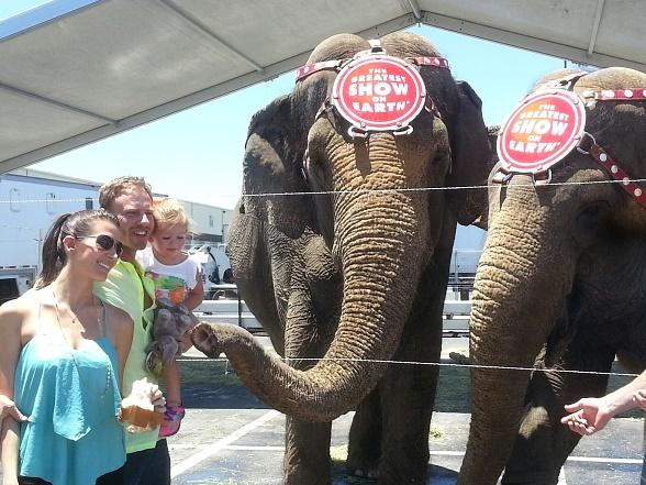 Ian Ziering and Family Spend Father's Day at Ringling Bros. and Barnum & Bailey Circus