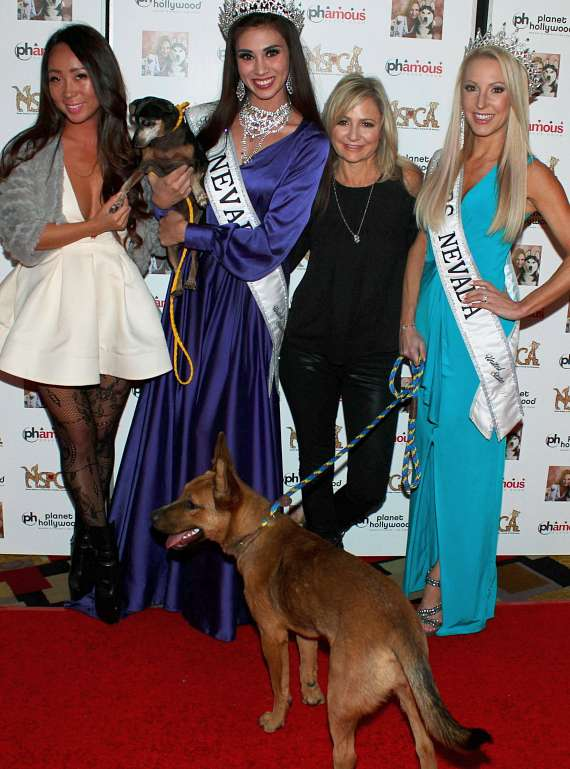 Lisa Song, Mrs Nevada Eve Dawes, Miss Nevada Shelby Kanani Johnson with Jennifer Harman at NSPCA Poker Tournament