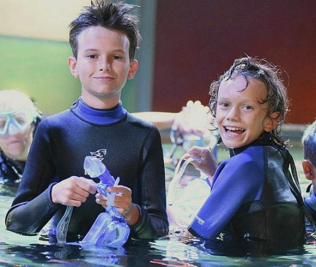 Seaquest Offering Complimentary Admission To Dads On Fathers Day June
