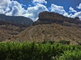 Hermosa (CO) Vineyard