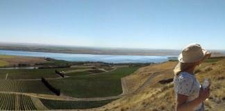 Horse Heaven Hills Panorama