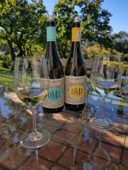 Chardonnay and Chenin Blanc