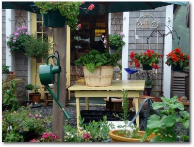 vegetable gardening online