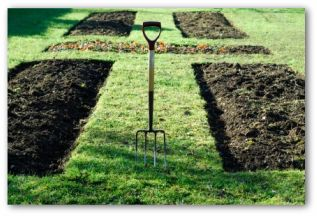 Free Vegetable Garden Planner Software and Worksheets on Patio Planner id=21018