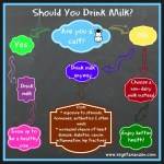 should you drink milk? flowchart infographic