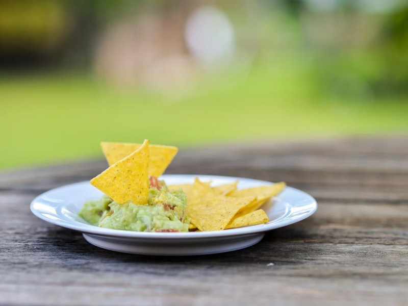 plate of guacamole and chips