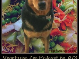 VZ073 - You can feed your pet a vegetarian diet...but should you https://www.vegetarianzen.com