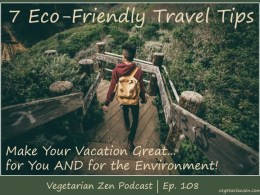 Vegetarian Zen podcast episode 108 - 7 eco-friendly travel tips https://www.vegetarianzen.com