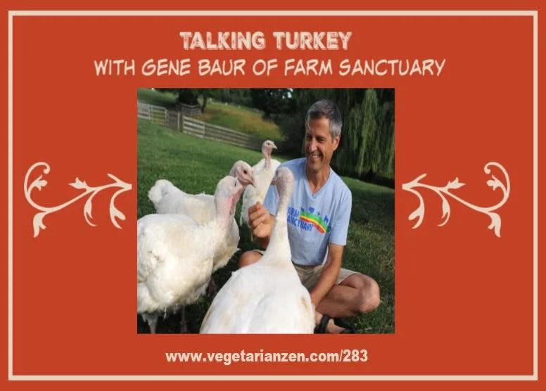 vegetarian zen podcast episode 283 - talking turkey with gene baur of farm sanctuary