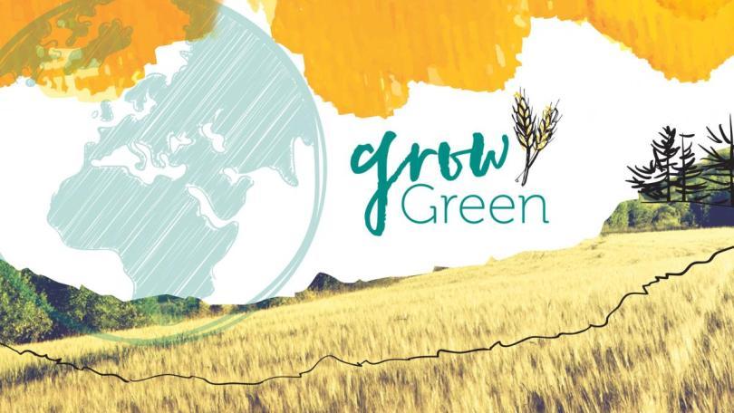 Grow_Green_Artwork_original_for_main_page