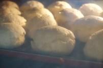 scones in oven
