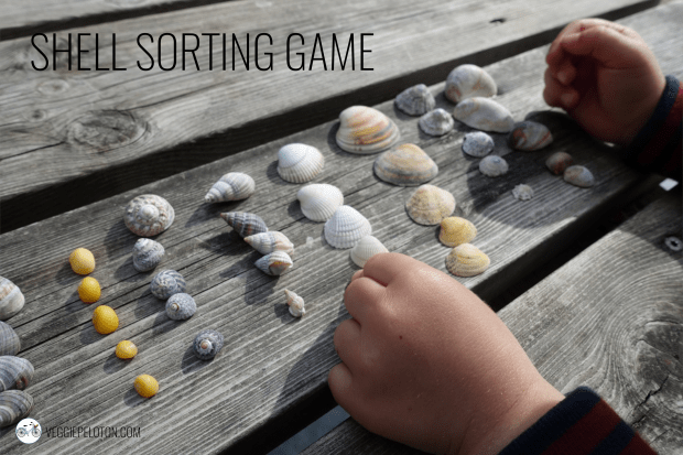 Shell Sorting Game