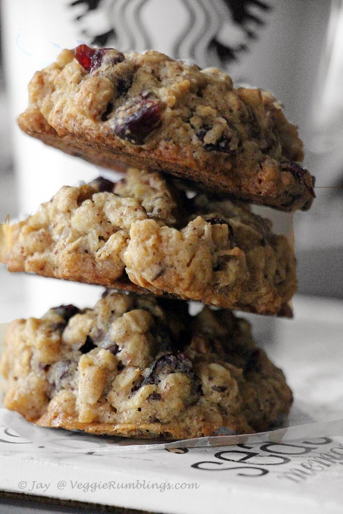 Chunky Cranberry Oatmeal Chocolate Cookie