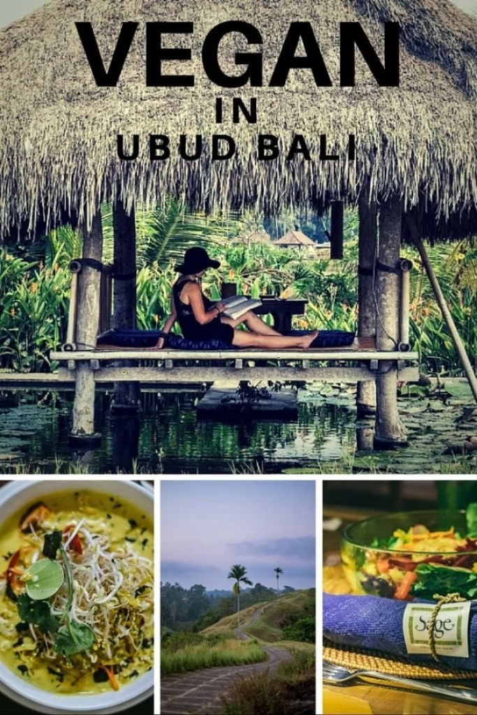 the best vegan food in ubud bali vegan travel guide veggie visa. Black Bedroom Furniture Sets. Home Design Ideas