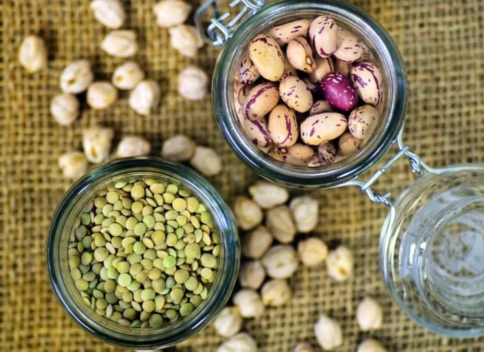 vegan dried foods