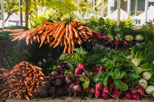 Importance of Vegetables in Our Daily Life