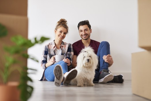 Introducing Your Dog to Your New Special Someone