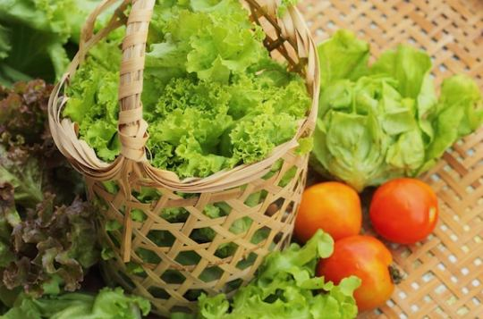 lettuce in a basket