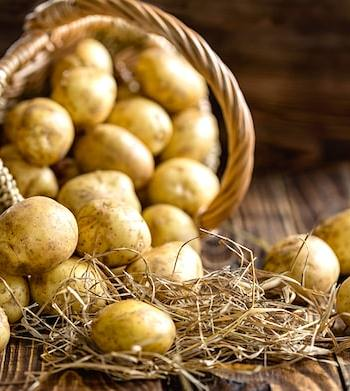 new potatoes in basket