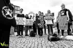 مظاهرة ضد استغلال الحيوانات في السيرك