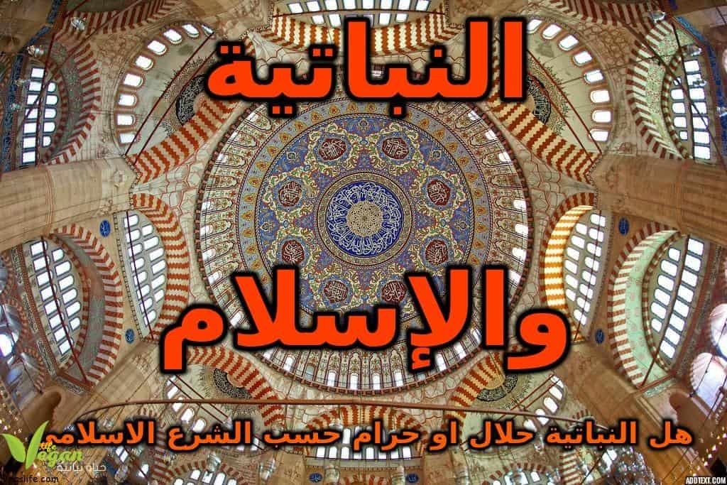 الإسلام والنباتية ، هل النباتية حلال أو حرام حسب الفقه الإسلامي، الخضرية من منظور ديني