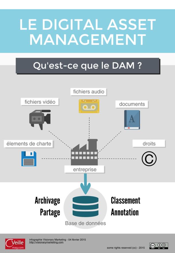 Digital Asset Management Infographie
