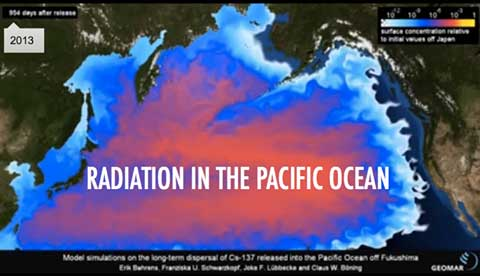radiation-in-the-pacific-ocean.480