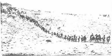 deportazione armeni