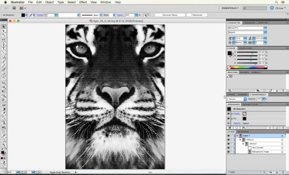 tigerinillustrator