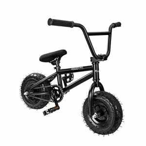 AnaellePandamoto Mini Vélo BMX Freestyle avec 3 Pièces Manivelle de 10 Pouce, Selle avec Hauteur Réglable pour Adulte, Taille: 79*73*69cm, Poids: 11kg (Noir)