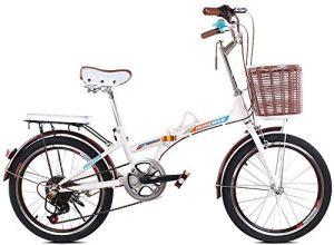 Pkfinrd 20 Pouces vélo Pliant Shifting – Les Hommes et Les Femmes Shock Absorber vélo – Double Disque de Frein vélo Pliant Shifting – Lady Adulte Vélo, Bleu (Color : White)