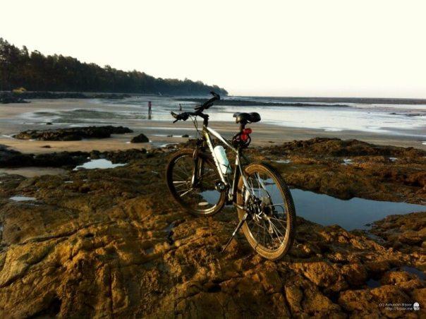 cycling-along-the-mangroves-of-mumbai-10