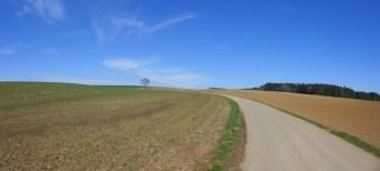 Kurz vor Bonndorf., hoch im Wtachtal.