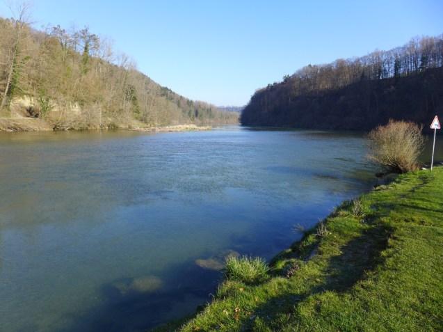 Am Rhein.