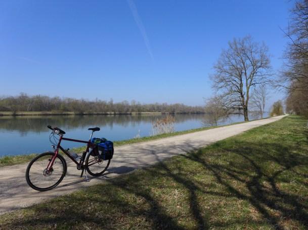 Am Rhein bei Breisach.