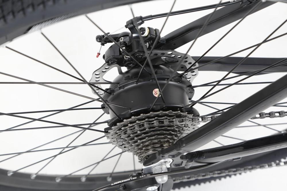 Koρυφαίο ηλεκτρικό ποδήλατο VELOGREEN KRISTALL ebike με μοτέρ 250Watt, 36V, 60Nm ροπη