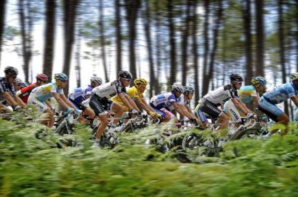 The bunch speeds by.