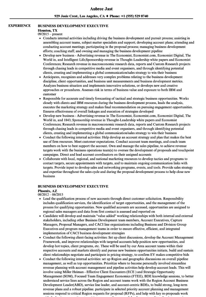 Business Development Executive Resume Samples Velvet Jobs