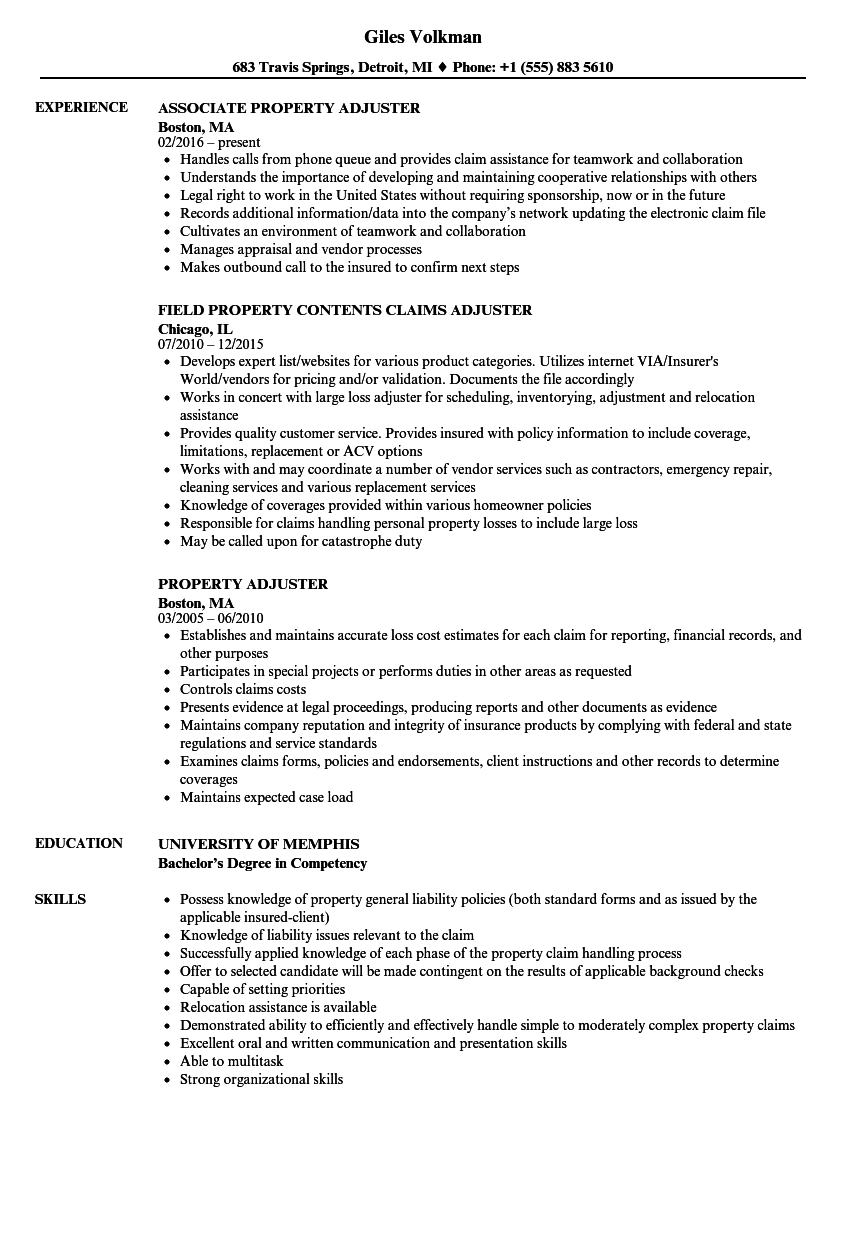 Claims Adjuster Resume Objective Summary For Resume