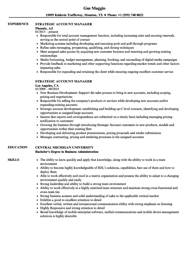 Account Manager Resume Template Resume Sample