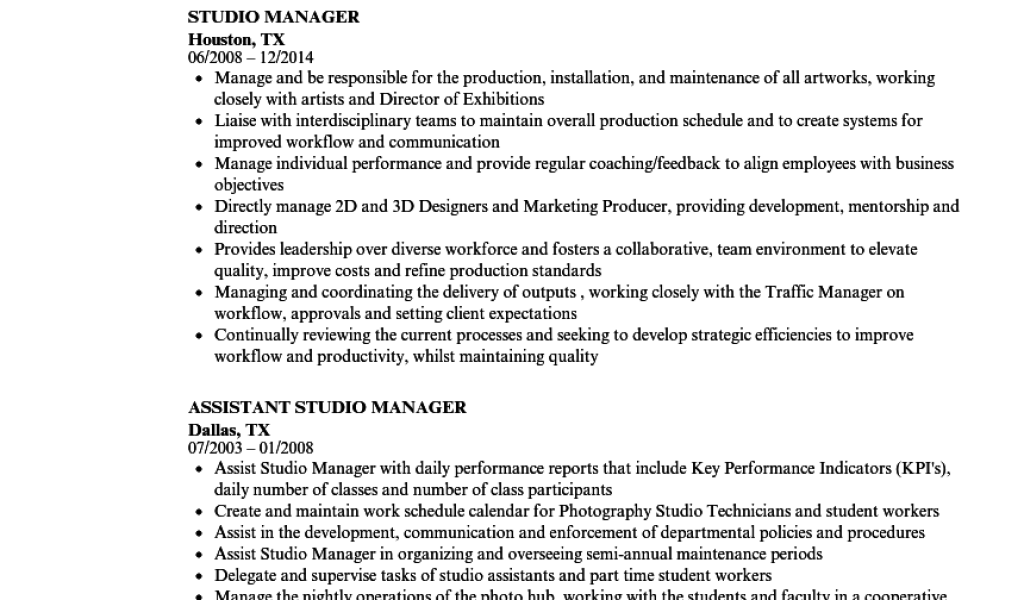 Sales Assistant Manager Job Description Resume 10