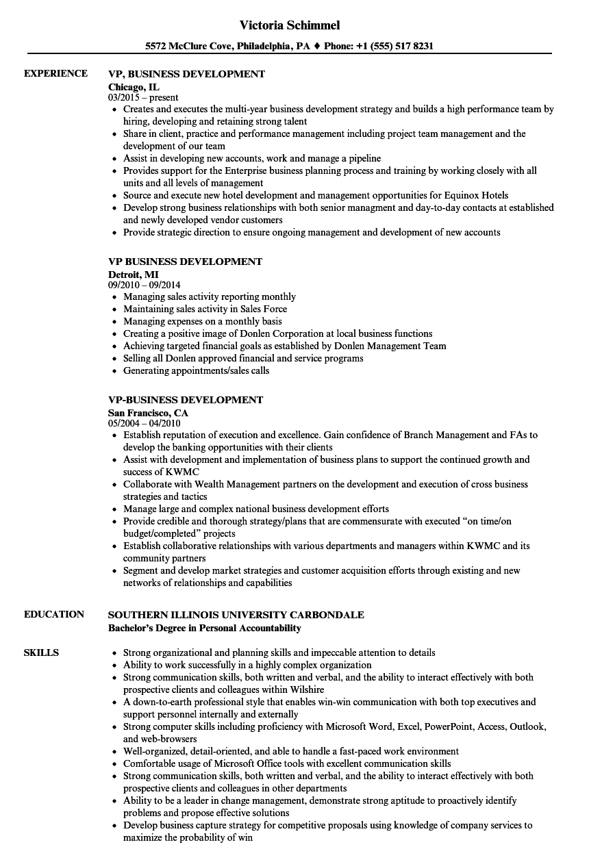 Vp Business Development Resume Samples Velvet Jobs