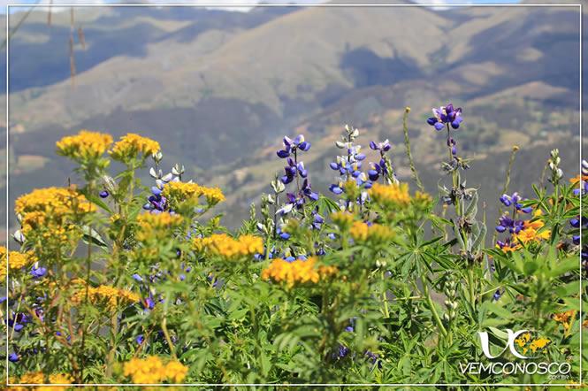O verde e colorido da montanha vai dando lugar a outra paisagem...