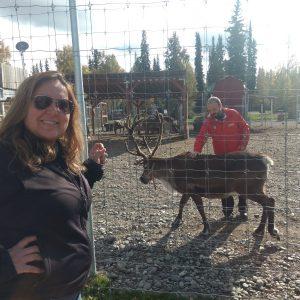 Criação de renas