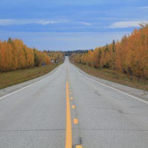 Alaska Highway no caminho de volta a Tok